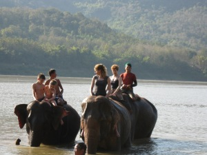Elephant bath in the Mekong River