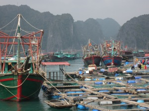 Fishing boats Cat Ba Town harbor II