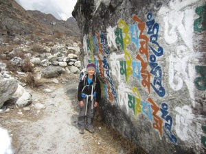 Carved and painted inscriptions along the trail, Langtang Valley