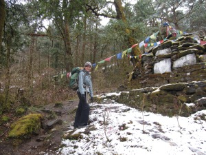 Passing a forest chorten on a slushy day, below Foprang Danda