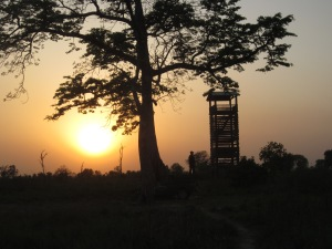 A viewing tower at sunset