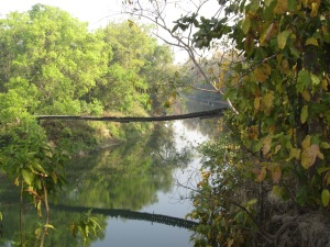 Temporary-lapse-in-parental-judgement bridge, Bardia National Park