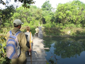 No posts, no cables, no rails, no problem, Bardia National Park
