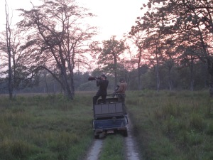 The big guns, Bardia National Park