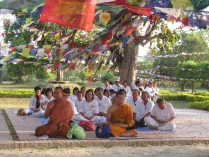 Monks with microphones under prayer flags strung between bodhi trees, Lumbini