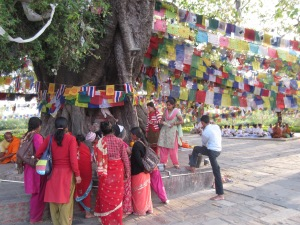 Hindu devotees under a bodhi tree, Lumbini
